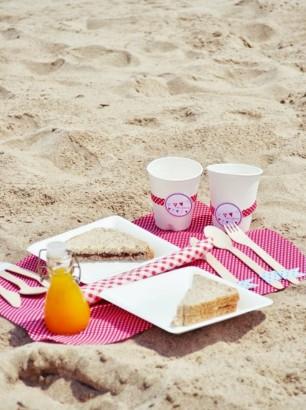 picnic playa 2