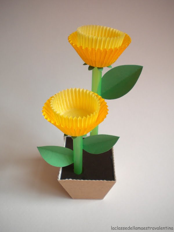 flores-de-pirotines